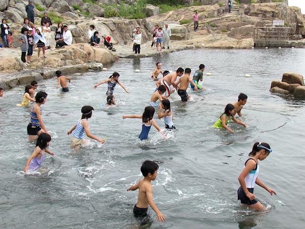侍浜岩場海水プール オープン